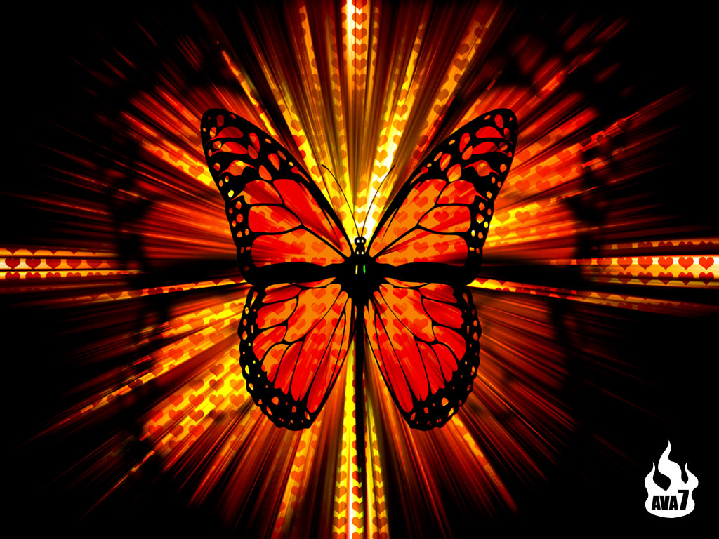 Butterfly-Wallpaper-On-Desktop