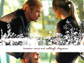 Horatio & Calleigh - csi-miami wallpaper