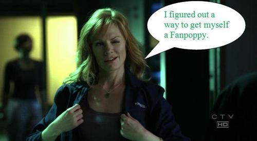 CSI Fanpoppy Fever: Catherine