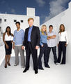 Les Experts Miami Cast