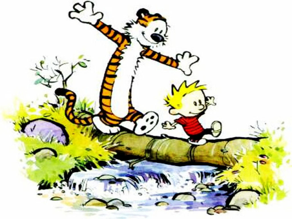 Calvin and Hobbes : Picture Gallery