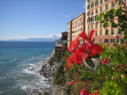 Italy wallpaper entitled Camogli
