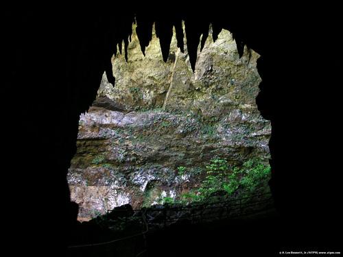 Camuy Cave