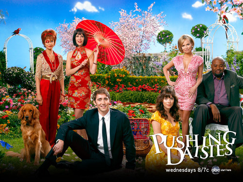 Pushing Daisies wallpaper titled Cast Photos