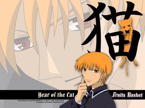 Fruits Basket wallpaper called Cat
