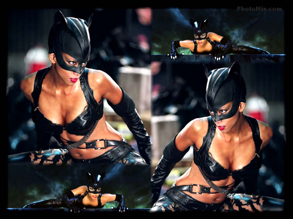Halle Berry Images Catwoman Hd Wallpaper And Background Photos 263498