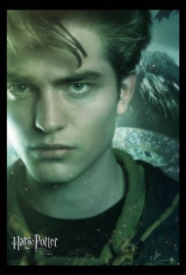 Cedric - hufflepuff Photo