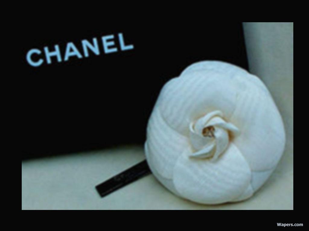 chanel chanel wallpaper 654599 fanpop