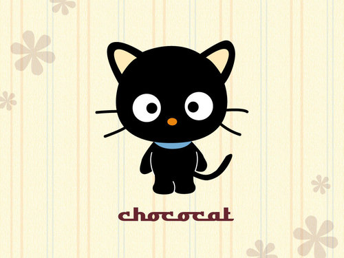 Sanrio wallpaper entitled Chococat
