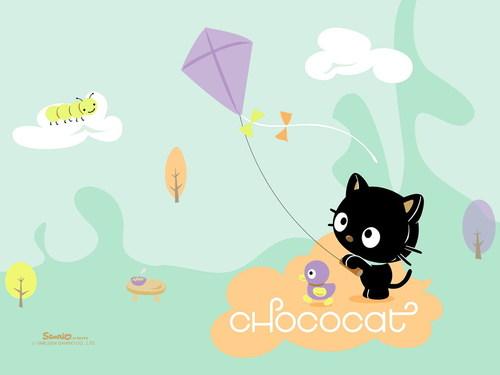 Sanrio wallpaper entitled Chococat