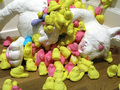 Chubby Bunny - marshmallow-peeps photo