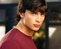 Clark - smallville wallpaper