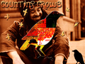Counting Crows - counting-crows wallpaper