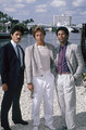 Castillo, Crockett & Tubbs - miami-vice photo