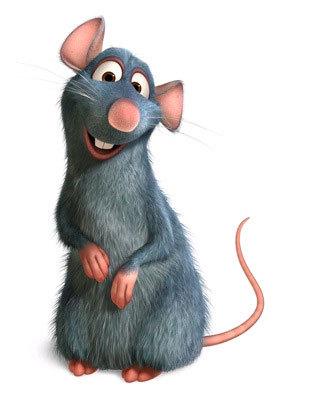 Cute rat pic