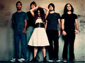 Cuteness - flyleaf wallpaper