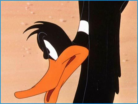 Daffy bebek