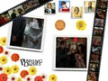 Daisies Photos - pushing-daisies wallpaper
