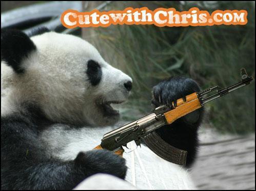 Dangerous Panda
