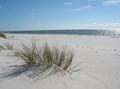 Danish beach