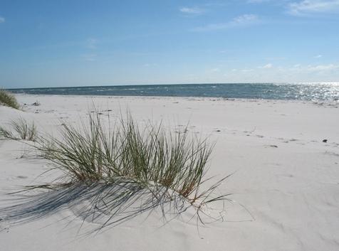 Danish playa