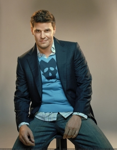 Bones wallpaper entitled David Boreanaz