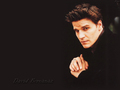 David Boreanaz - david-boreanaz wallpaper