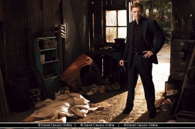 CSI: Miami wallpaper entitled David Caruso