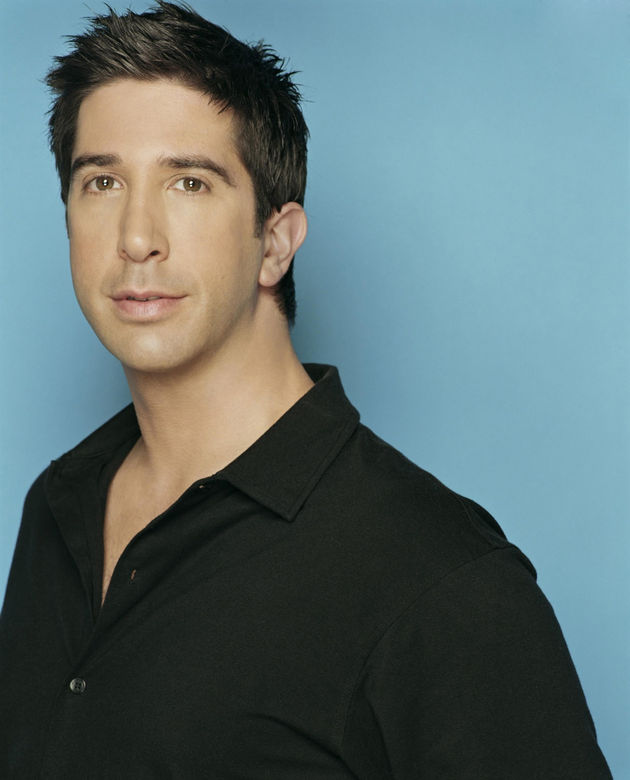 David Schwimmer - Images Gallery