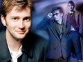 David Tennant - david-tennant wallpaper