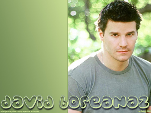 Seeley Booth wallpaper entitled David