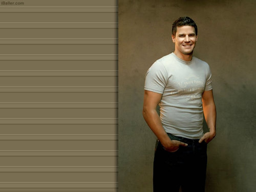 Seeley Booth wallpaper titled David