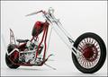 Davis Love Bike
