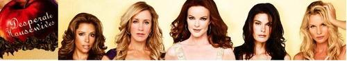 Desperate Housewives Banner - desperate-housewives Fan Art