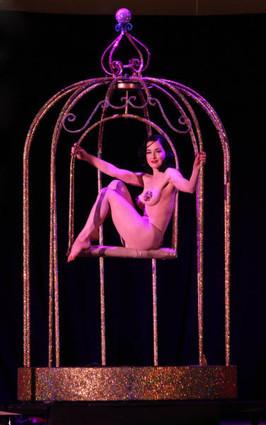 Dita Performing