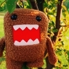 domo-kun photo titled Domo-kun