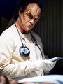 Dr.Phlox