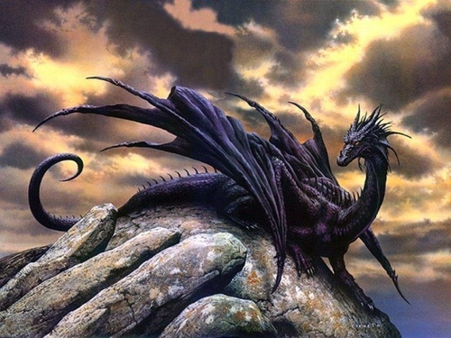 Dragon Picture