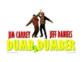 Dumb and Dumber - jim-carrey wallpaper
