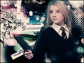 Dumbledore's Army - dumbledores-army wallpaper