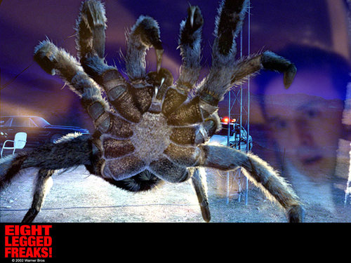 Eight Legged Freaks!