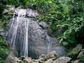 El Yunque Waterfall - puerto-rico wallpaper