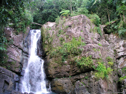 El Yunque Waterfall