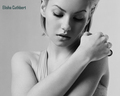 Elisha in B&amp;W - elisha-cuthbert wallpaper