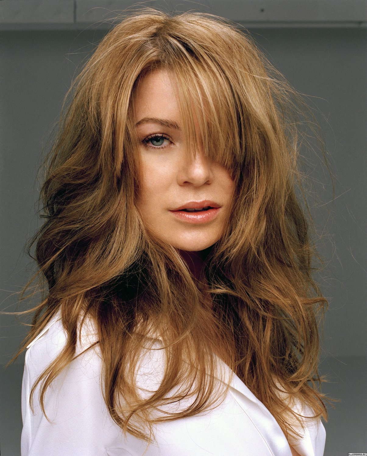Ellen Pompeo - Ellen Pompeo Photo (100556) - Fanpop