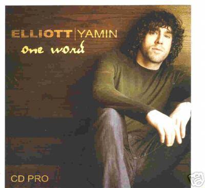 Elliot Yamin