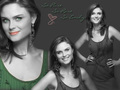 Emily =) - deschanel wallpaper