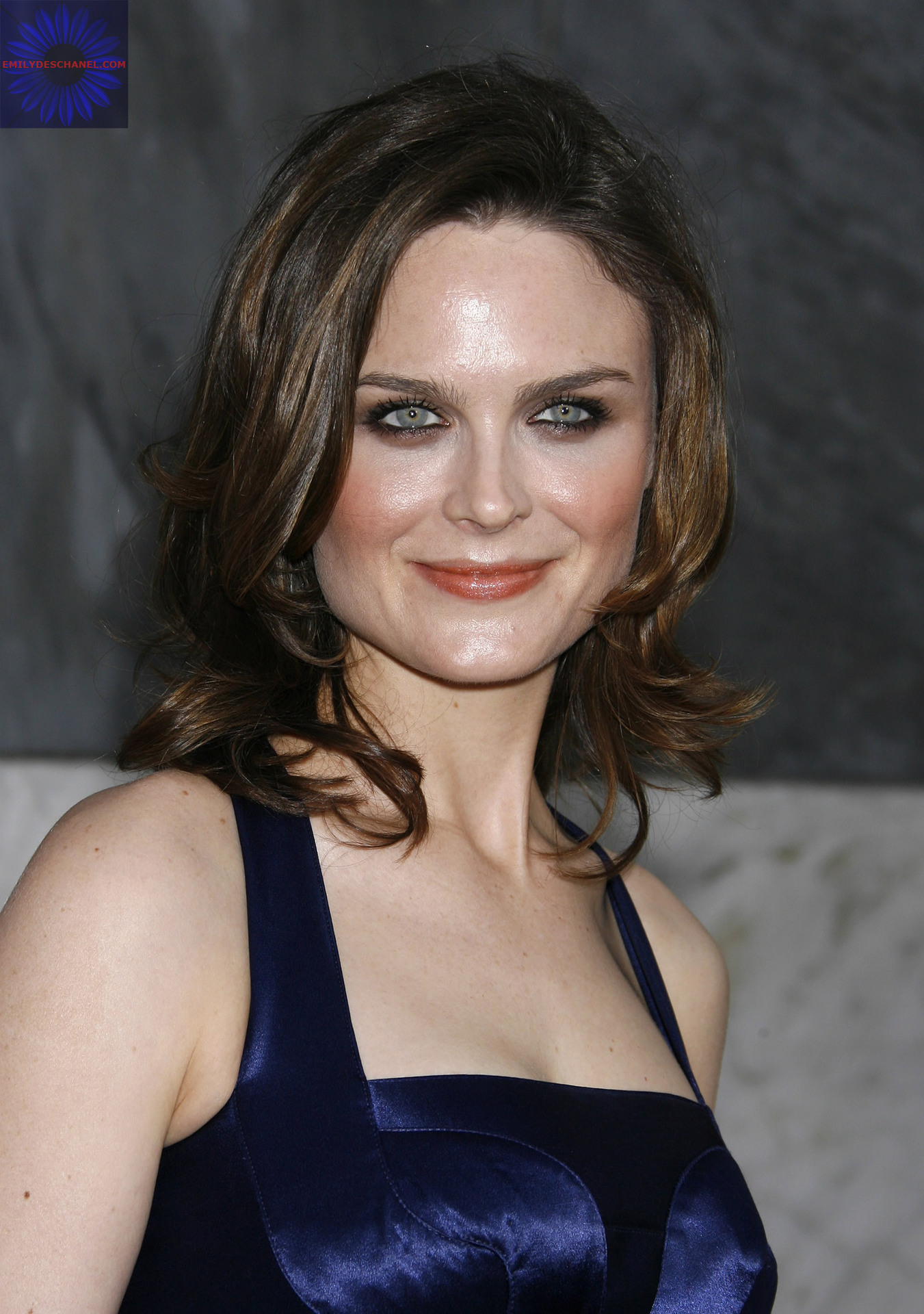 Emily Deschanel Natural Hair Color