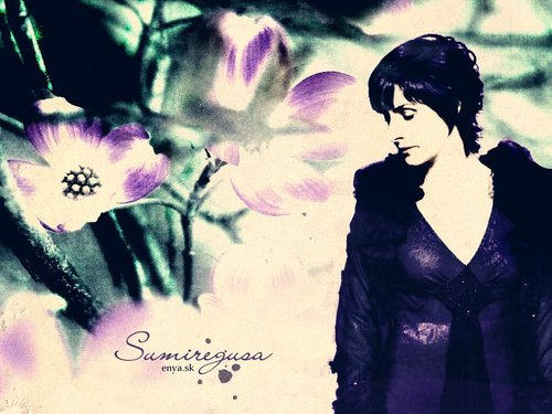 Enya - enya Wallpaper