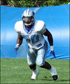 Ernie Sims - detroit-lions photo